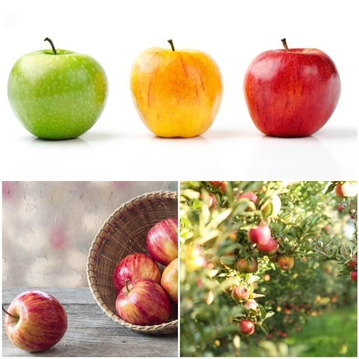 diabetes tipo 2 y manzanas