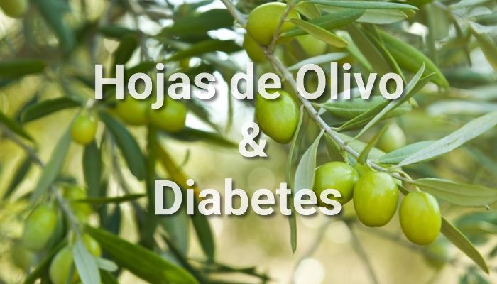 dieta para la diabetes ziektebeeld