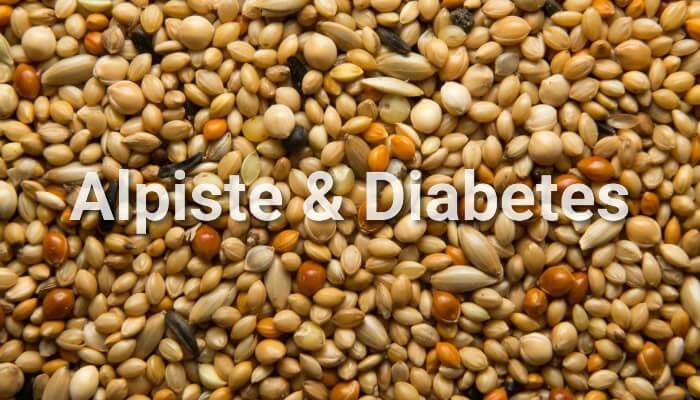 alpiste para diabetes como preparar lasaña