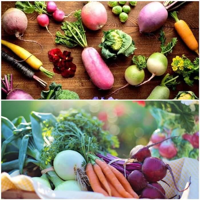 Mejores vegetales para diabéticos